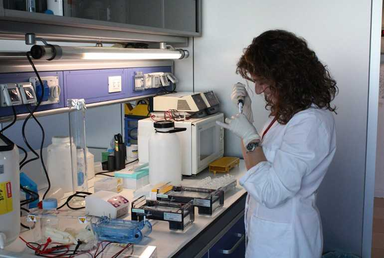 В лабораторных условиях